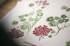 Sandberg: Wallpaper with pelargoniums Elin är en hyllning till alla pelargonälskare!