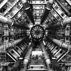 Patternity: Hadron Collider, The Telegraph