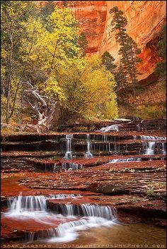 Arch Angel Falls, Zi Expression