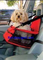 Auto zitje - Car Booster Seat - In de auto - Beestenspul al 30 jaar een begrip voor leuke/exclusieve artikelen...