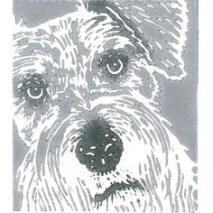 Schnauzer Dog - Original Hand Pulled Linocut Print