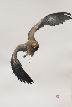 Karl Martens, Golden Eagle (Framed) | Cricket Fine Art