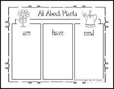 All About #Plants #Tree #Map