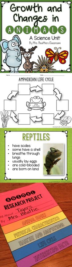 This is a complete unit for teaching about growth and changes in animals. Perfect for the Ontario Grade 2 Science curriculum!