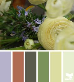 Flora Hues - http://design-seeds.com/home/entry/flora-hues62
