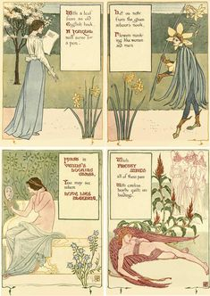 Walter Cane         ~~        Jonquil,VENUS'S LOOKING GLASS,LOVE LIES BLEEDING,PRETTY MAIDS