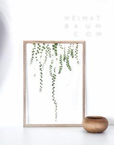 moebe frames plants heimatbaum.com