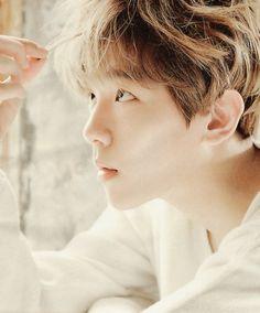 Super Handsome Baek