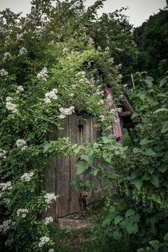 © bysahlia.com Gmunden Austria, Designer, Cabin, House Styles, Garden, Flowers, Photography, Home Decor, Garten