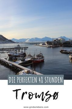 Tromso, Lofoten, Reisen In Europa, Boat, River, Highlights, Outdoor, Gin, Amsterdam Attractions