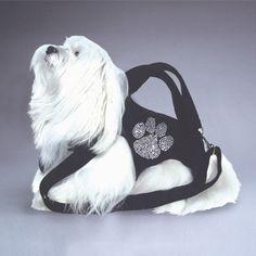 Lulu needs this
