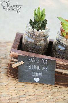 Succulent Mason Jar Teacher Gift by Shanty 2 Chic Great Teacher Gifts, Teacher Appreciation Gifts, Cute Gifts, Easy Gifts, Christmas Gifts For Coworkers, Christmas Diy, Christmas Cards, Thank You Gifts, Creative Gifts