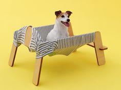 O incrível projeto de Kenya Hara, do Japão, chamado de Architecture for Dogs, é uma coleção que reinventam novas casas para cachorros, desenvolvido por diversos arquitetos e designers.