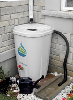 Enviro World Corporation Rain Barrel with Brass Spigot, 55 Gallon > Large 55 Gallon capacity No cheap imitation that looks worn out after one season Sleek flat back square design fits naturally in any location around the home