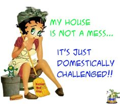 My house is not a mess ... it's just domestically challenged!! And so am I!