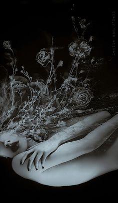 ☆ Limbo ~:¦:~ Artist Leslie Ann O'Dell ☆