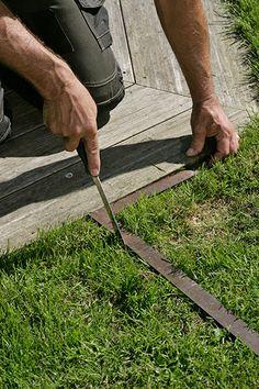 Vindskydd terrass Porch Garden, Yard Art, Backyard Landscaping, Garden Inspiration, Gardening Tips, Fence, Landscape, Outdoor Decor, Gardens