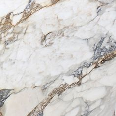 Calacatta fantasy home italian white marbles calacatta fantasy this ... what a beautiful marble, I love the mix of colors(gray and brown and in between) i'm going to have to practice to be able to paint something this pretty!