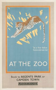 AT THE ZOO, LEOPARD - I'm a fine fellow