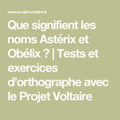 Que signifient les noms Astérix et Obélix ? | Tests et exercices d'orthographe avec le Projet Voltaire