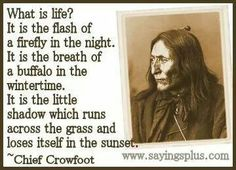 22 famous Native American Quotes by the most famous American Indians. The ground on which we stand is sacred ground. It is the blood of our ancestors ~Chief Plenty Coups Native American Prayers, Native American Spirituality, American Indian Quotes, Native American Quotes, American History, Words Quotes, Wise Words, Life Quotes, American Proverbs