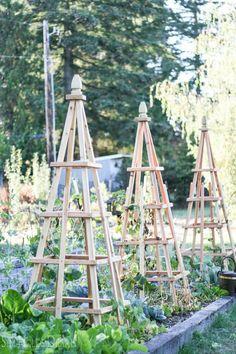 18 Meilleures Images Du Tableau Treillis Diy Wall Trellis Garden