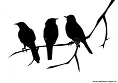 Bird On A Branch Silhouette | Amazing Wallpapers