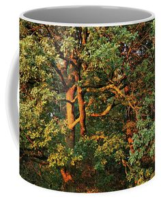 Golden Branches Coffee Mug for Sale by Ren Kuljovska Nature Artists, Nature Artwork, Unique Gifts For Men, Mugs For Sale, Travel Photographer, Botanical Art, Art Market, Great Artists, Branches