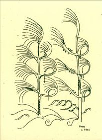 'Pines' a drawing by Walter Anderson