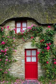 Climbing roses say Welcome~