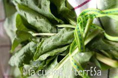 oseille—sorrel—acetosa #seasonalharvest #springharvest #seasonal #fruits #vegetables #spring #harvest #springvegetables #seasonalvegetables