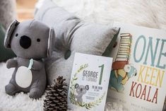 Koala Birthday Party - Lifes Little Celebration First Birthday Themes, 1st Boy Birthday, 1st Birthday Parties, First Birthdays, Birthday Ideas, Baby Koala, Baby Baby, Party Bags, Party Gifts
