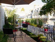 Balcony garden plants