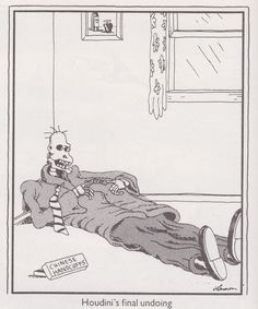 """""""The Far Side"""" by Gary Larson. Never did buy that other story. Cartoon Jokes, Funny Cartoons, Funny Comics, Funny Jokes, Funny Stuff, Hilarious, Gary Larson Comics, Gary Larson Cartoons, Jokes"""