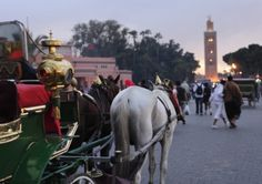 Travel: 48 hours in Marrakech - Lifestyle - The Scotsman