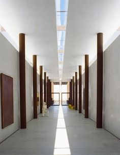 The gallery hall, supported by corten columns, uses natural light from above to inform and illuminate the space below.