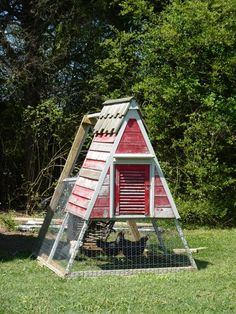 I want chickens in my yard!
