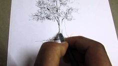 How To Draw Tree by Pencil Stroke