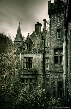 """An Abandoned Castle in Belgium! """"The Château de Noisy Belgian is a spectacular castle, abandoned since Though the nature and vandals have become ruins still is an awesome place that reflects the beauty and luxury that had in the past. Abandoned Buildings, Abandoned Castles, Abandoned Mansions, Old Buildings, Abandoned Places, Abandoned Belgium, Gothic Buildings, Gothic Architecture, Spooky Places"""
