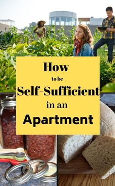 Do you want to be more self-sufficient but live in an apartment? Think it can't be done? Think again! Check out my tips and tricks to be more independent and self-sufficient in your apartment! Wilderness Survival, Survival Prepping, Survival Skills, Survival Gear, Self Sufficient, Urban Farming, Urban Gardening, Hydroponic Gardening, Indoor Gardening