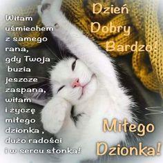 Good Morning, Animals, Buen Dia, Animales, Bonjour, Animaux, Animal, Animais, Good Morning Wishes