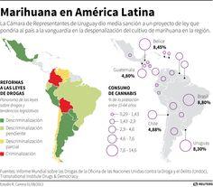 Mariguana en América Latina