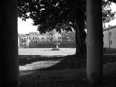 Polesine, Ottobre 2014 - Villa Badoer (Fratta Poesine)_2