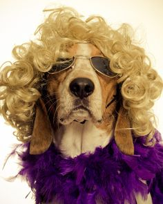 just had a make-over.........