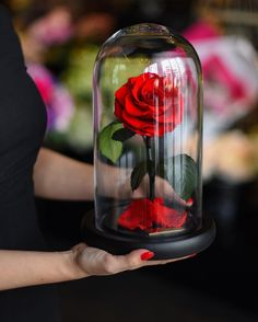 Get your hands on a totally real Beauty and the Beast-like enchanted rose.