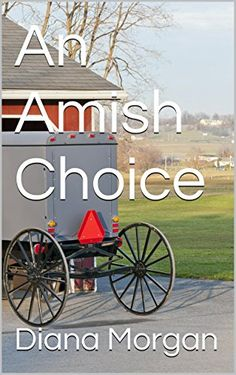 An Amish Choice by Diana Morgan http://www.amazon.com/dp/B00O25AUJK/ref=cm_sw_r_pi_dp_f-AEvb1Z5Z8WX