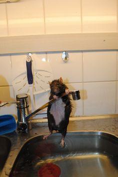 dont want to take a bath