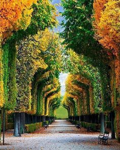Schönbrunn #Wien Austria    Pics via @shescharmingblog  Tag your best photos with #mrgoodtravel to and Follow us be Feautured!  Enjoy our network! Follow all our profiles!   @mr.goodhotels - To fly in the most beautiful Hotels & Resort of the planet!   @mr.goodstylish - To see the most Stunning Stylish pics of the World!    We are #Riserz  #travel #adventure #vacation #travelphotography #instatravel #traveltheworld #warrenjc #Adventureculture #passportheavy #tourtheplanet #travelawesome…