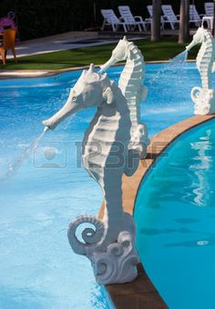 Picture of white seahorse statue fountain beside the swimming pool stock photo, images and stock photography. Seahorse Decor, Mermaid Pool, Pool Fountain, Beautiful Pools, Dream Pools, Okapi, Garden Pool, Cool Pools, Pool Landscaping