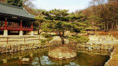Lovely pond in Korean Folk Village 한국민속촌 in Seoul. Tour guides for Seoul are on https://pg.world/countries/south_korea/guides